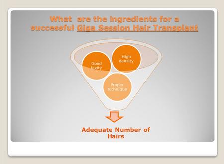 Successful Giga Session Transplant