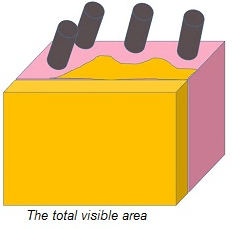 Total Visible Area