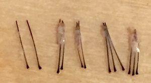 Human Hair follicular unit graft