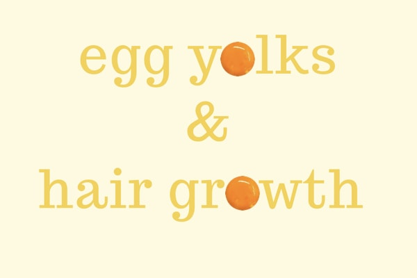 Hair growth by egg yolks